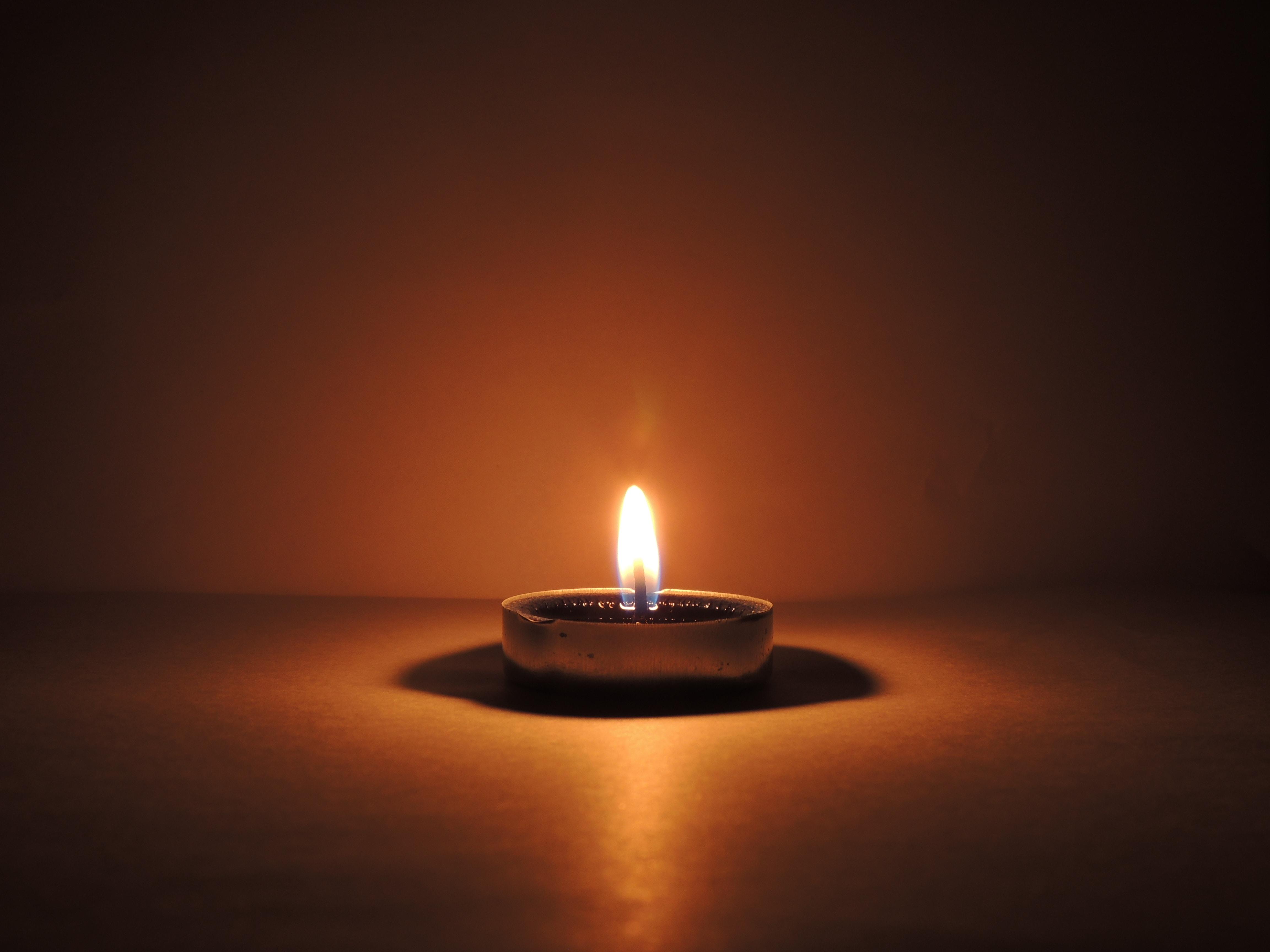 Licht des Lebens